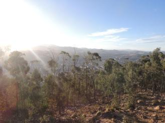 Die erste wunderschöne Aussicht auf die Sucre hinter den Bäumen, welche wenn ich mich nicht irre Eucalyptusbäume waren.